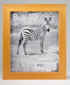 prisma-frames-zebra